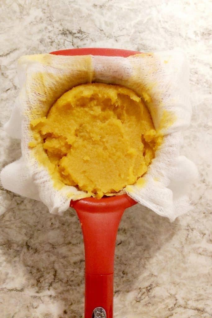 instant pot pumpkin puree